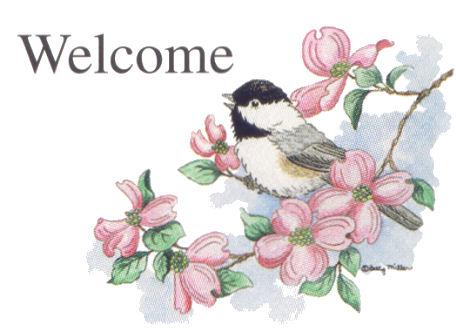 Welcome sunjee 246403qg3hl24260